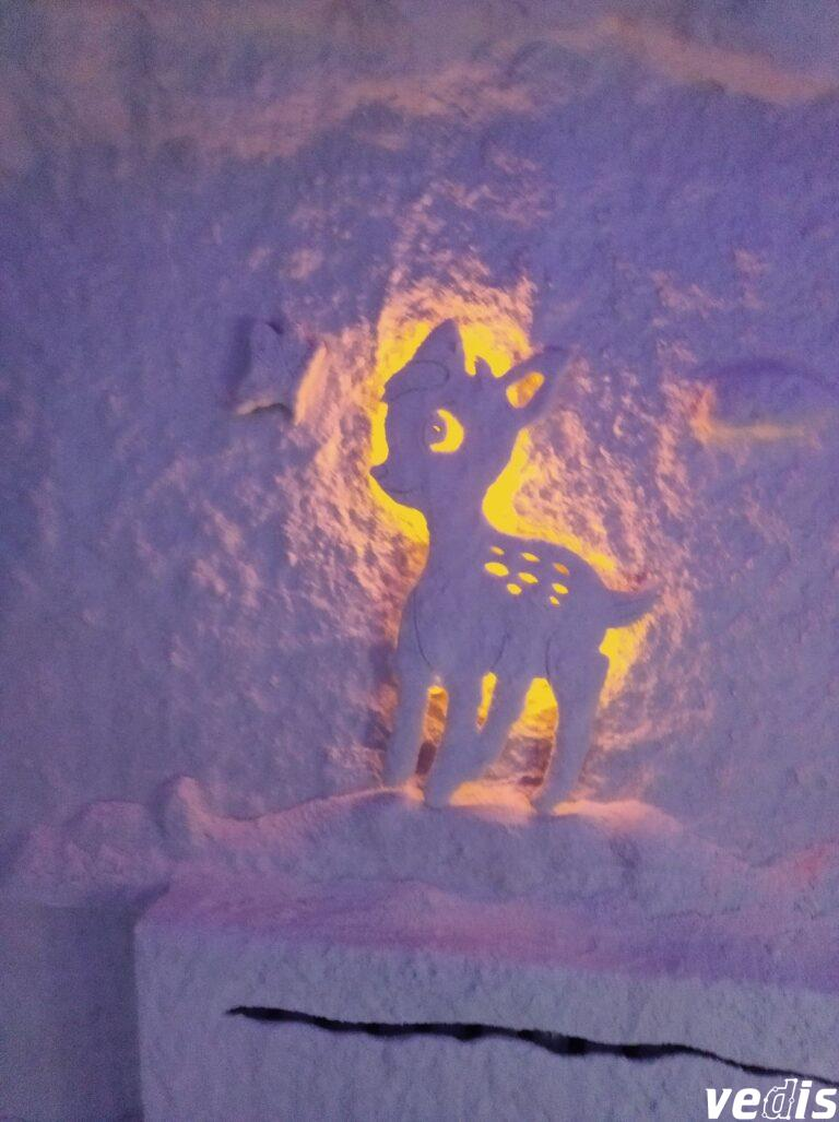 """Специальный общеобразовательный детский дом """"Малютка"""", Киев, Украина"""